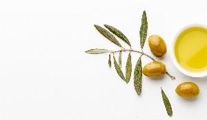 Zeytin Yağı Analizleri